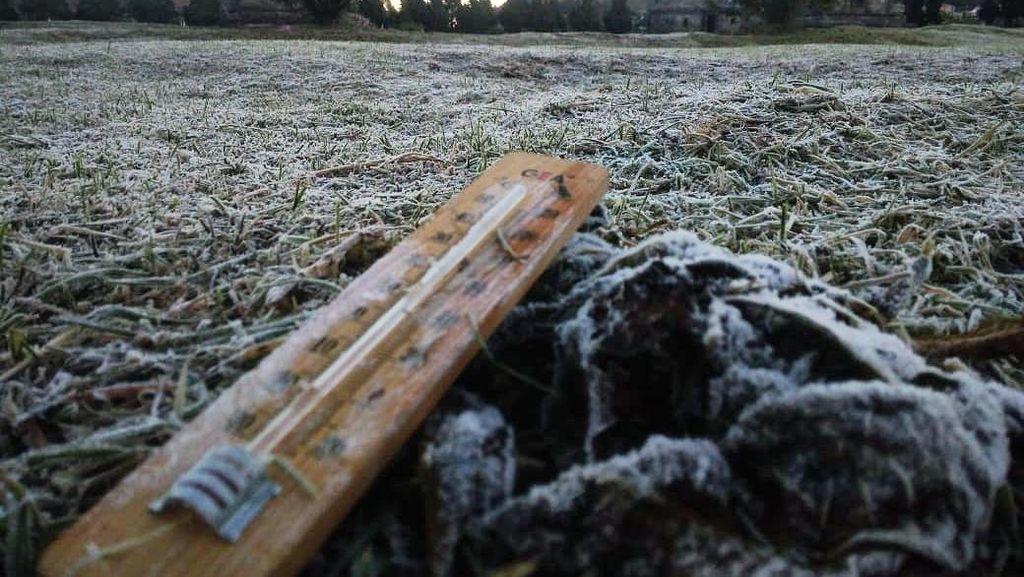 Membeku! Suhu di Dieng Turun Lagi Sampai Minus 4 Derajat Pagi Ini