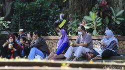 Kunjungan Wisata ke Kebun Binatang Bandung Mengalir