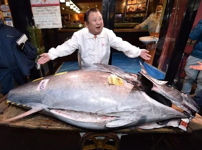Ikan Paling Mahal di Dunia