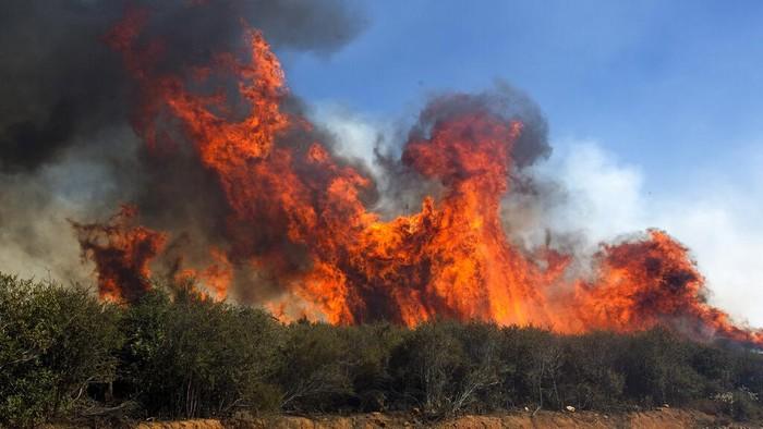 Petugas pemadam kebakaran dikerahkan untuk padamkan api kawasan California, AS. Berikut aksi para petugas damkar saat tengah padamkan karhutla.
