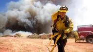 Aksi Petugas Damkar Padamkan Api di California