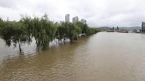 6 Tewas Akibat Banjir Bandang di Korea Selatan