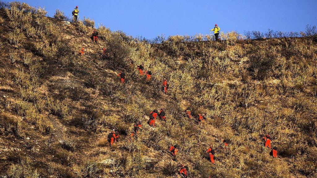 1.300 Damkar Berjibaku Halau Kebakaran Hutan di California