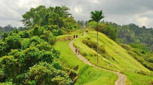 Campuhan Ridge Walk, Ubud, Bali. Ist