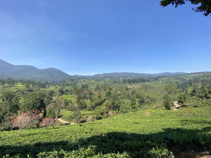 Kemah Gaya Overland di Ranca Cangkuang Bandung