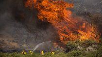 Kebakaran Hutan Melanda California, 1.300 Pemadam Dikerahkan
