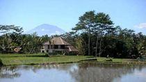 Upaya Membangun Pariwisata Bali yang Rendah Emisi