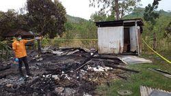 Gempar Kisah Tragis Bocah 7 Tahun di NTB Diperkosa Lalu Dibakar