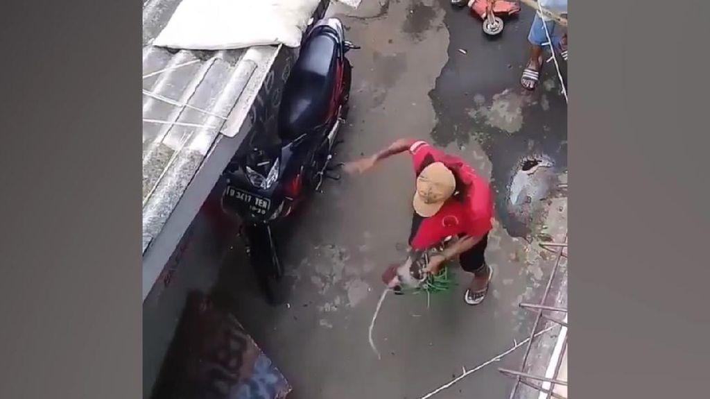 Duh! Pawang Aniaya Monyet di Jaktim, Satpol PP Turun Tangan