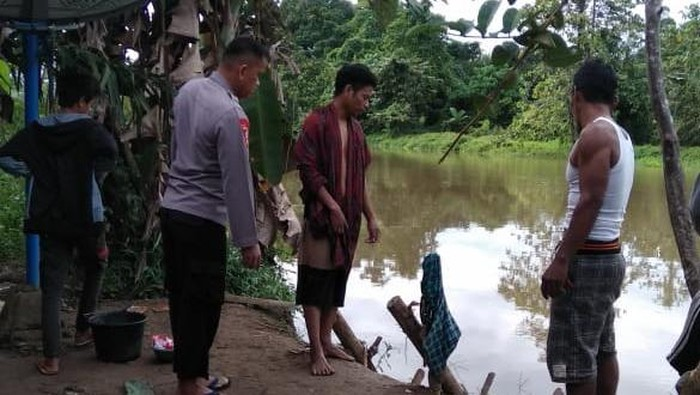 Sungai tempat Hasmila (40) hilang diterkam buaya di Mamuju Tengah (dok. Istimewa).