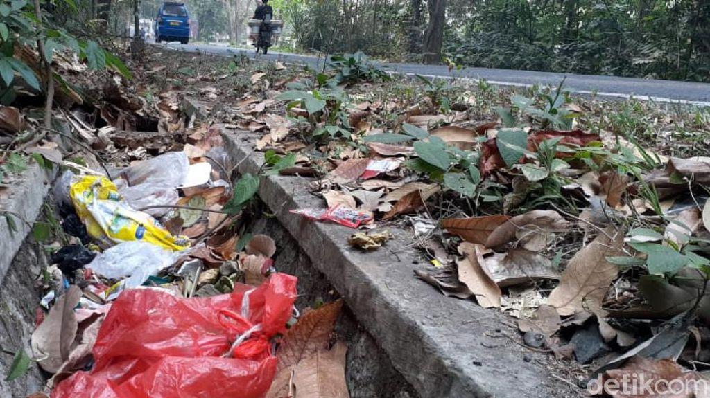 Duh, Tumpukan Sampah Jadi Makanan Monyet di Cagar Alam Sukawayana