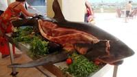 Dikritik Keras, 5 Hidangan Ikan Hiu Ini Populer di Mancanegara