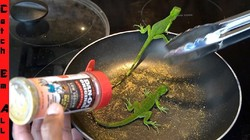 Wow! YouTuber Ini Masak Iguana Goreng Tepung yang Ditangkapnya