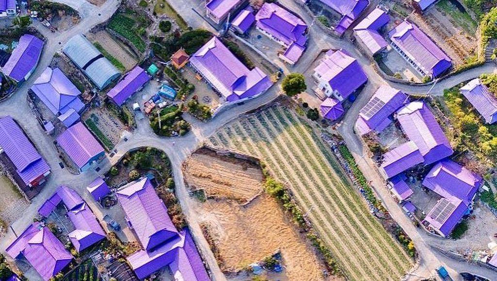 Purple Island, Wisata Hits Korea yang Serba Ungu