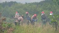 Siaga Tangani Karhutla, Polda Kalsel-TNI Gelar Simulasi Pemadaman