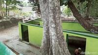 Di kompleks Umbul Gedong terdapat satu pohon trembesi besar, satu pohon sereh, dua beringin, dan dua pohon tak diketahui jenisnya. Juga terdapat jaringan air program Pamsimas.