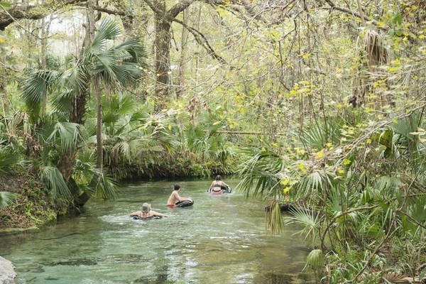 Nikmati mendayung di Apopka, Florida yang terkenal dengan suhu hangatnya. Berjalanlah menyusuri kanal sempit Bonsai Bend, dimana terdapat cabang-cabang pohon ek berumur ratusan tahun tercelup ke dalam air. (iStock)