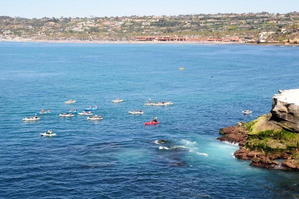 Nah di San Diego ada namanya Pantai La Jolla. Waktu terbaik datang ke sini adalah Juli-September. Karena di bulan-bulan itu kamu bisa menemukan hiu macan tutul berenang berbondong-bodong. (iStock)