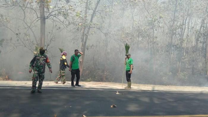 Hutan Baluran terbakar
