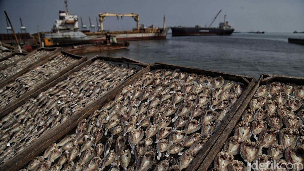 Nestapa Nelayan di Tengah Pandemi Corona