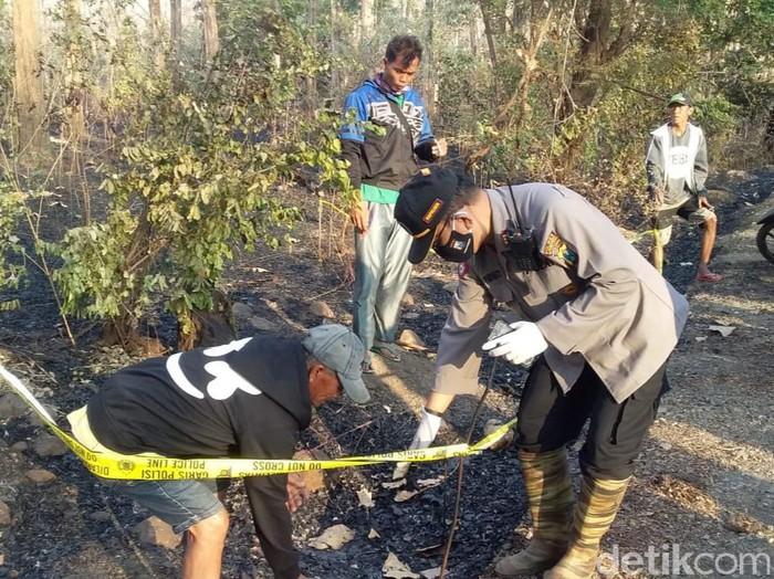 Kerangka manusia ditemukan di sisa kebakaran hutan Taman Nasional (TN) Baluran, Situbondo. Mayat yang sudah tinggal tulang itu terbungkus kantong plastik warna hitam.