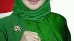 Balon Bupati Sukabumi Reni Marlinawati Wafat Usai Sowan ke Ketum PPP