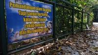 Jika berjalan lebih jauh ke dalam hutan, ada tulisan vandalisme di sebuah bambu yang dilakukan oleh oknum pengunjung. Padahal, pengelola juga memasang pesan jaga kebersihan seperti Pemandangan alam itu gratis. Tapi sangat berharga kalau mau bayar cukup menjaga dan merawatnya saja.