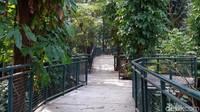 Babakan Siliwangi Forest Walk ini sudah berdiri sejak Januari 2018. Di hari biasa, wisatawan dapat berkunjung secara gratis. Pembukaan kembali tempat wisata ini masih belum dapat ditentukan waktunya mengingat wabah pandemi masih berlangsung di Kota Bandung.