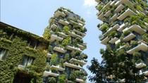 Tren Green Building