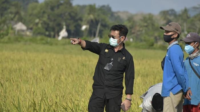 Mentan Syahrul Yasin Limpo