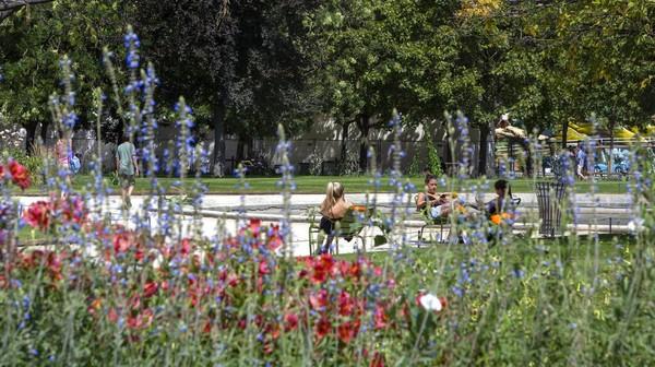 Orang-orang berjemur di Jardins des Tuileries di Paris, Prancis. AP Photo/Rafael Yaghobzadeh