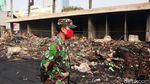 Potret Pasar Timbul Barat Tomang yang Ludes Terbakar