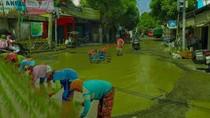 Jalan Rusak Disulap Jadi Sawah-Kolam Renang, Ini Kata Pemkab Rembang