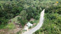Tembus Hutan, Proyek Jalan Perbatasan RI-Malaysia Digeber Lagi
