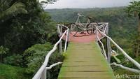 Begitu instagramable, jembatan ini dikelilingi hujaynya pemandangan hutan dan persawahan (Dadang Hermansyah/detikcom)