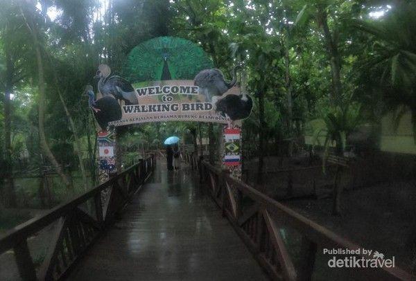 Bird Walk Eco Green Park Batu