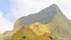 Wabup Bondowoso Minta Bukit Piramid yang Telan 2 Korban Jiwa Ditutup