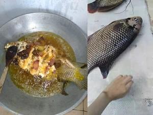 Netizen Ini Bagikan Kisah Sedih Goreng Ikan Gurame Usia 23 Tahun