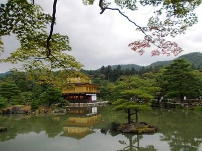 Kenangan Perjalanan ke Negeri Sakura Jepang