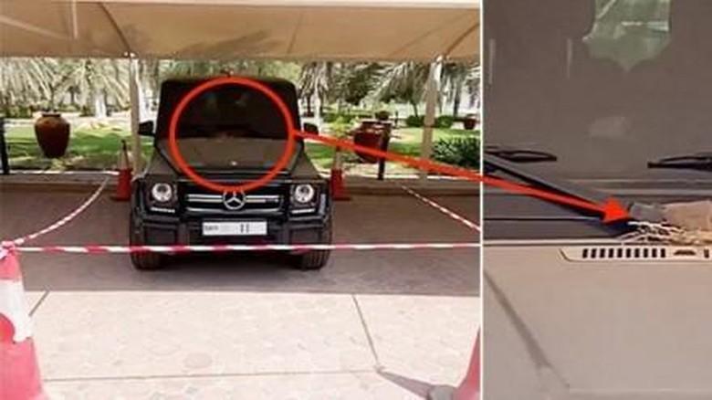 Mobil putra mahkota Dubai yang dijadikan sarang burung