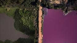 Air Laguna Paraguay Setengahnya Berubah Jadi Ungu, Ada Apa?
