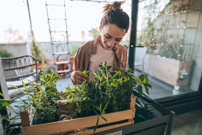 Photo of young woman taking care of her plants on a rooftop garden
