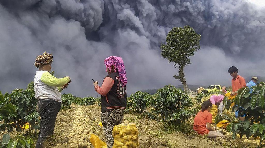 Melihat Lagi Foto-foto Erupsi Sinabung