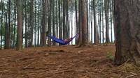 Selain itu, ada juga hammock untuk bersantai traveler. Fasilitas lain di sini, ada bumi perkemahan, rumah pohon, tempat bermain anak, dan museum tani. (Ismet Selamet/detikcom)