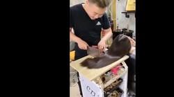 Potong Rambut Pakai Pisau Daging dan Talenan, Hasilnya Keren
