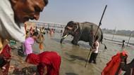 Potret Kehidupan dan Ancaman Lingkungan di Sungai Gangga