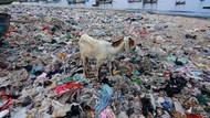 Ih Jorok, Sampah Menumpuk di Bibir Pantai Banyuwangi
