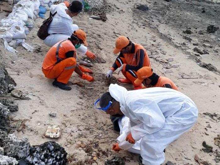 Pertamina bersihkan tumpahan minyak di Pulau Pari