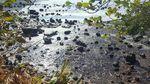 Tumpahan Minyak Ancam Kehidupan di Mauritius