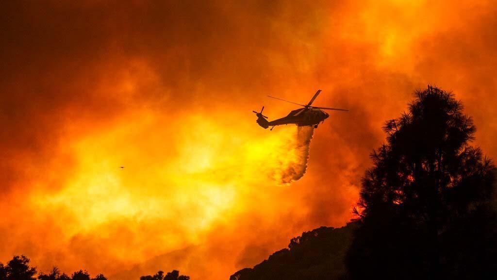 Potret Kebakaran Hutan di California
